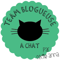 team blogueuse